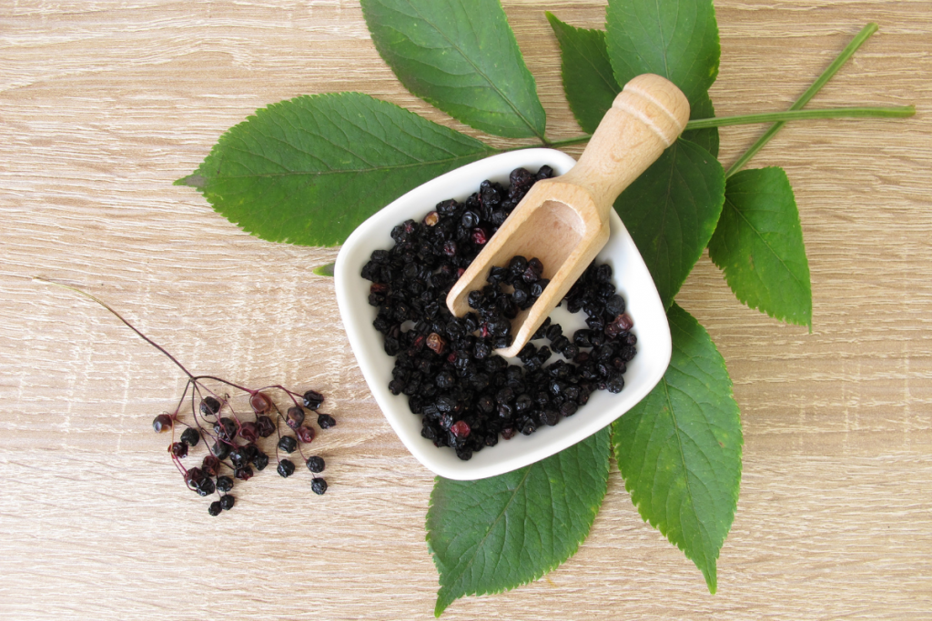 avoid cold and flu: elderberry syrup